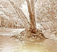 Faerie tree by roam