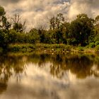 Wetland Dreaming - Tidbinbilla Sanctuary, Australia - The HDR Experience by Philip Johnson