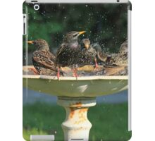 Starling Bath iPad Case/Skin
