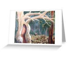 Old Tree - Flinders Ranges Greeting Card