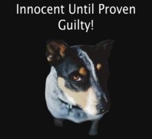 Innocent until proven Guilty! by Sally  Djurovich
