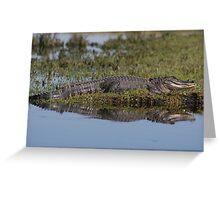 Gator Reflextion Greeting Card