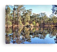 Bush Waterhole Canvas Print