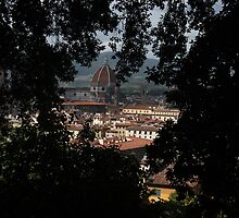 Different view of the Duomo by RFK C