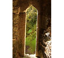 Spider web at Blarney Castle Photographic Print
