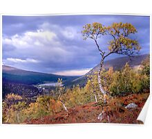 Autumn in the mountains Poster