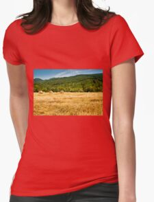 Hay bales Womens Fitted T-Shirt