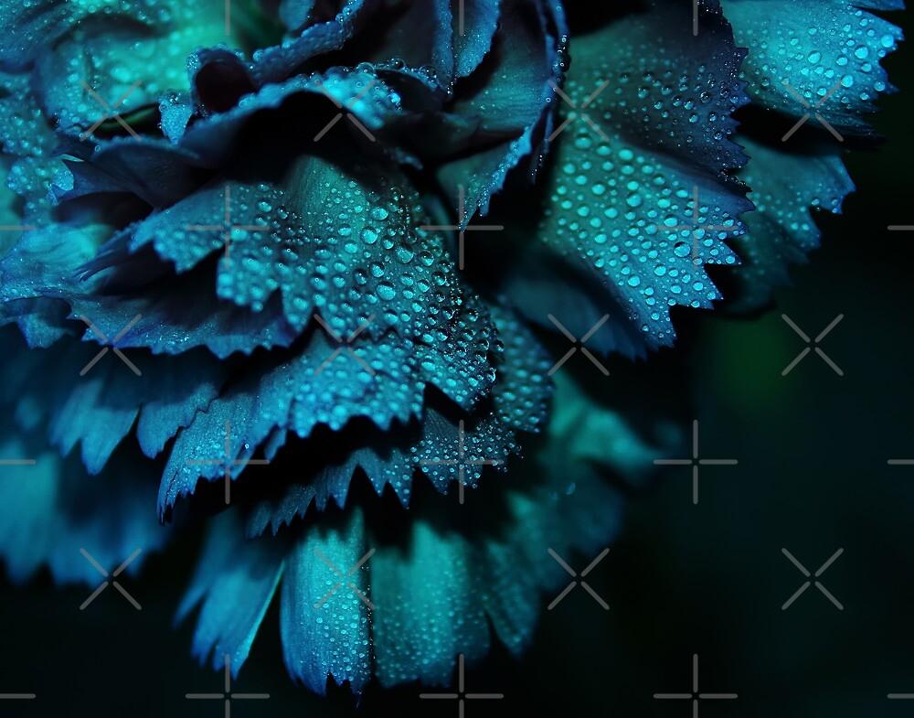 Powder Blue by Ingrid Beddoes