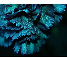 Powder Blue Photographic Print