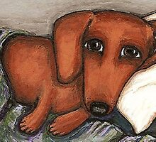 Dachshund on the pillow by PashaTP