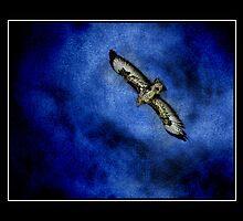 Treated buzzard against blue sky by Ellamey
