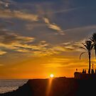 Palm Sunset~ by WJPhotography