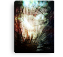 All you can see Canvas Print
