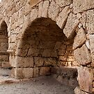 Arches of the Ages by Donell Trostrud