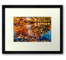 Boston Fall Foliage Reflection Framed Print