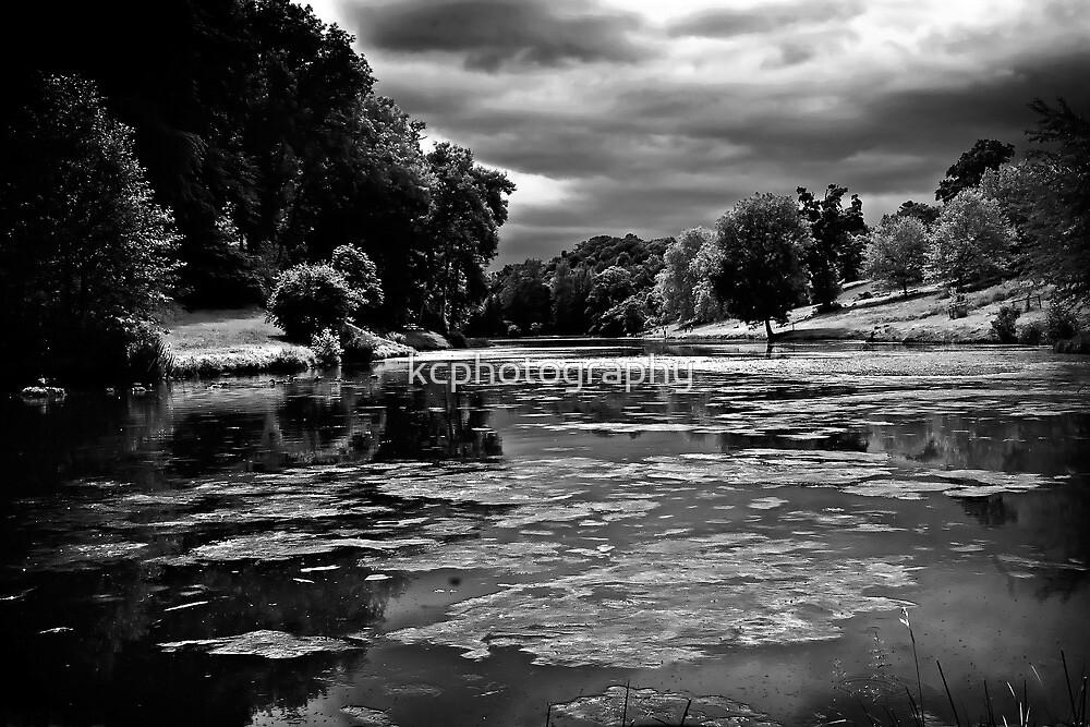 Ugbrooke Lake by Richard Hamilton-Veal
