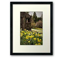 Country Spring Framed Print