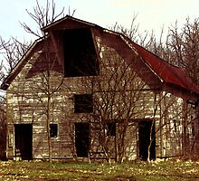 Country Barn by David Owens