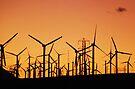 Wind Power by Tori Snow