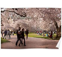 First Day of Spring Poster