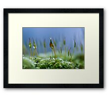 Sharing the essence Framed Print