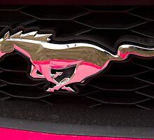Pink Pony by KScholtz