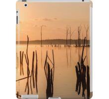 Reservoir at Sunrise  iPad Case/Skin