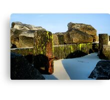 Right On the Edge Canvas Print