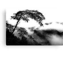 Alone In The Clouds Canvas Print