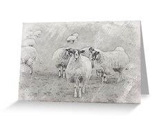 Pencil Sheep Greeting Card