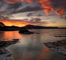 Sulfur Point, Lake Rotorua by Michael Treloar