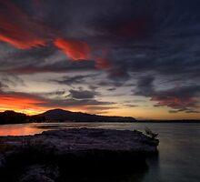 Lakefront, Rotorua by Michael Treloar