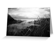 Medway Marshes Greeting Card