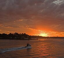Random burst of light - Sunset over Sydney Harbour by Norman Herfurth