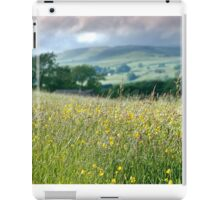 Meadows to Dales iPad Case/Skin