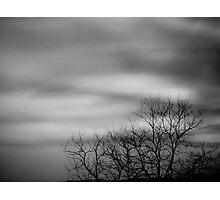 Late Winter Light Photographic Print