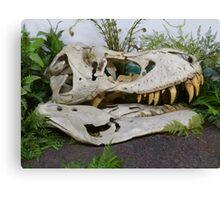 T-Rex Fossil Canvas Print