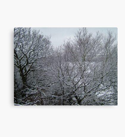 Snow Canvas Print