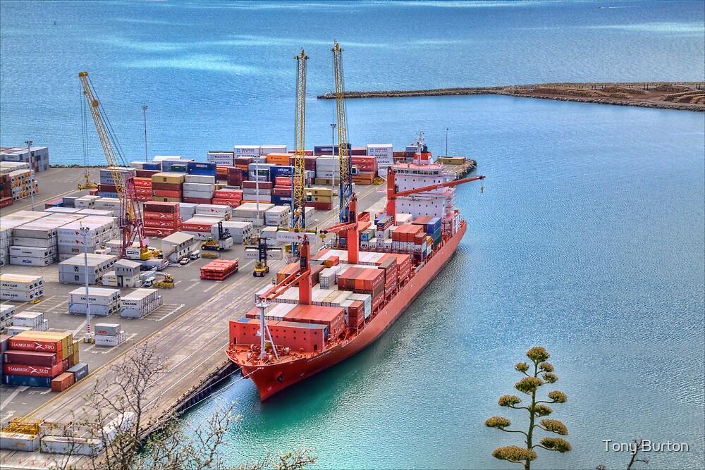 Port of Napier by Antony Burton