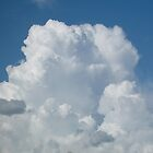 Poofy Clouds - Florida Skies by Christina Spiegeland