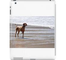 Dog on the Beach iPad Case/Skin