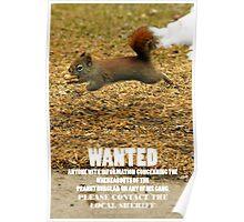 Peanut Shortage Divulged - Episode 5 Poster