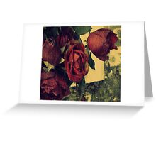 where roses grow Greeting Card
