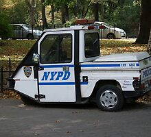 New York - NYPD Chase Car by Jeffrey Lamprey