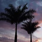 Double Palm Silhouette - Florida Sunset by Christina Spiegeland