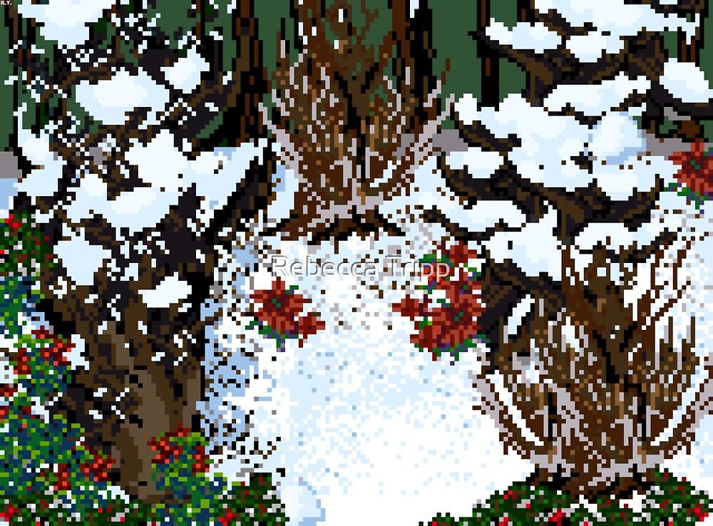December: The Waltzing Winterland by Rebecca Tripp