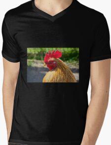 Little Red Rooster Mens V-Neck T-Shirt
