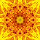 Pollen Dream by Matthew Sims