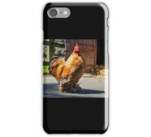 Come Roost Awhile iPhone Case/Skin
