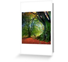 Autumn Beech Greeting Card